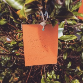 My Wish on the Wishing Tree
